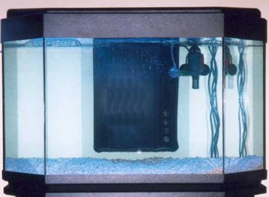 La technique de l 39 aquarium marin et r cifal for Construire un aquarium