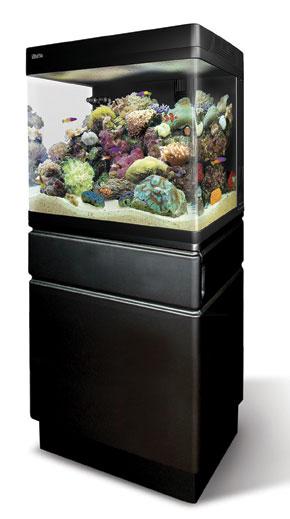 Aquarium 100l pas cher aquarium l pas cher metz aquarium for Aquarium rond pas cher